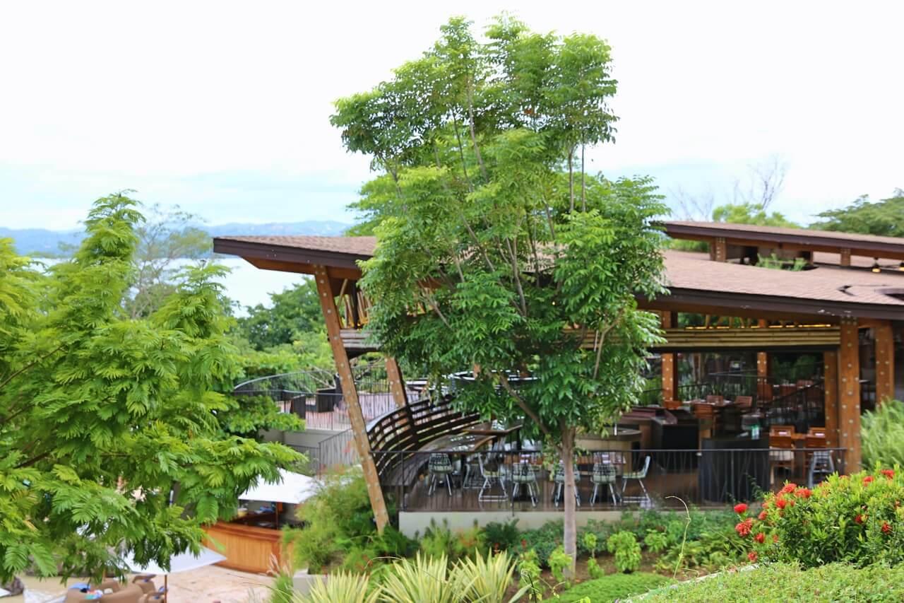 Andaz Papagayo restaurant