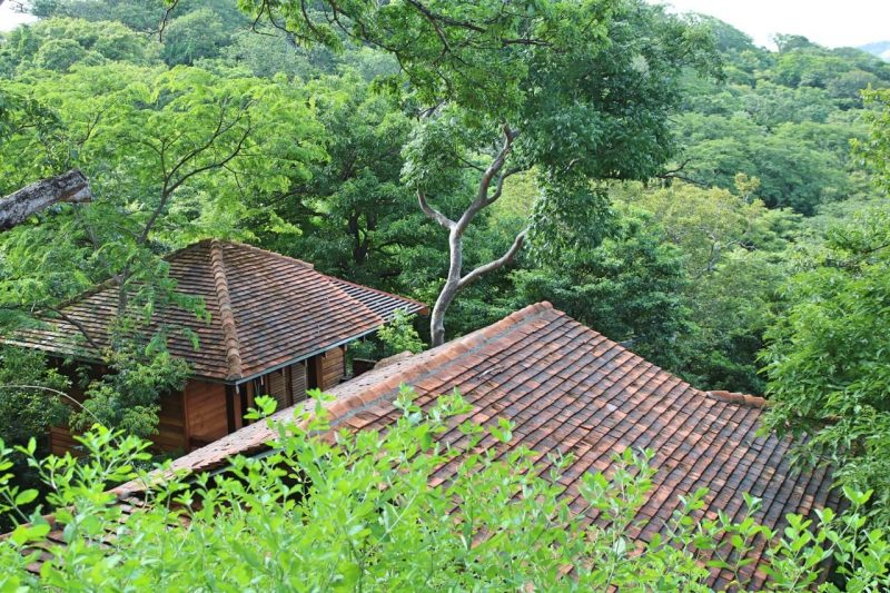 Where to stay in Nicaragua: a luxury treehouse at Aqua Wellness Resort